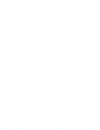Sustainable Coastlines Banner